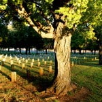 Photo of the Week: Stones River National Cemetery