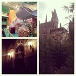 Disney World and Universal Studios Instagrammed