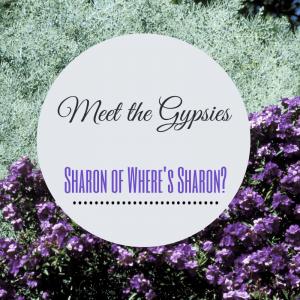 meet the gypsies, travel interview, wheres sharon