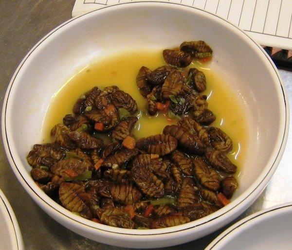 silkworm larvae, bizarre foods, korea