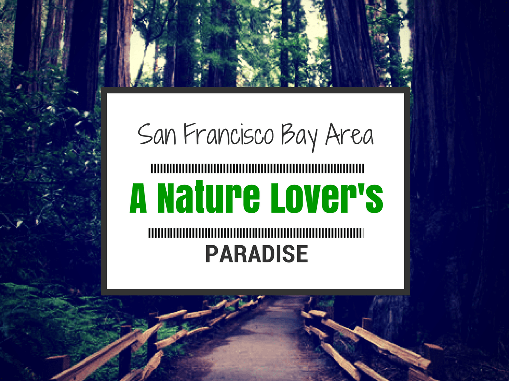 san francisco outdoors travel