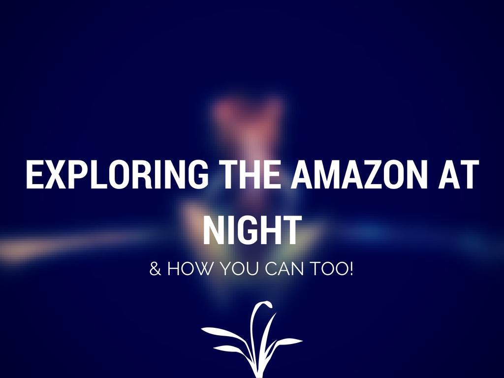 AMAZON NIGHT HIKE