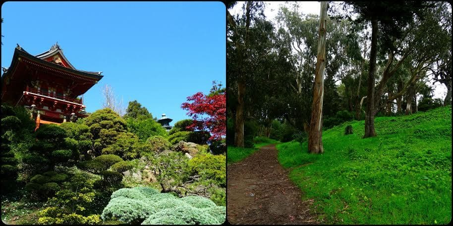 Golden Gate Park California