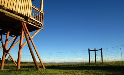 treehouse south africa