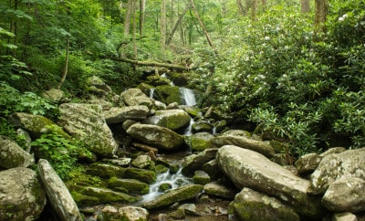 road trip smoky mountains blue ridge parkway gatlinburg roaring fork motor trail