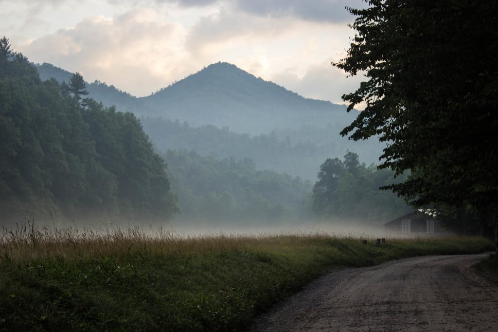 ROAD TRIP FROM THE SMOKY MOUNTAINS UP THE BLUE RIDGE PARKWAY : PART TWO