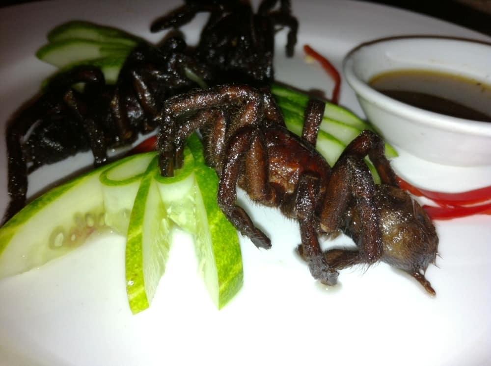 Eating tarantula in cambodia
