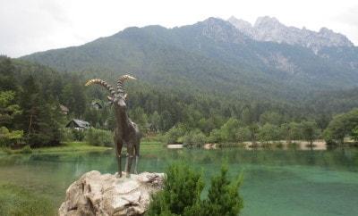 Goldenhorn at Lake Jasna Slovenia