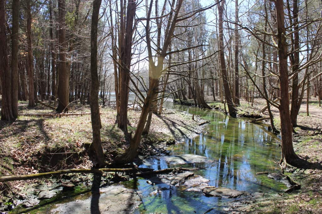 TENNESSEE STATE PARKS |BLEDSOE CREEK