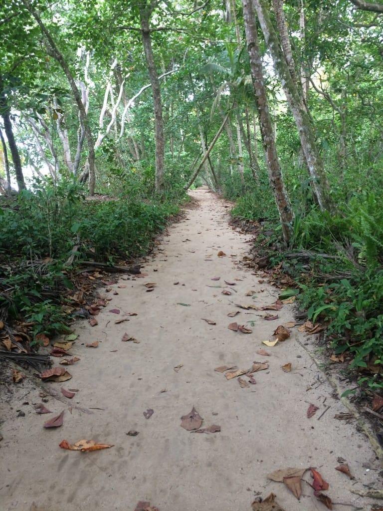 Cahuita National Park | Costa Rica