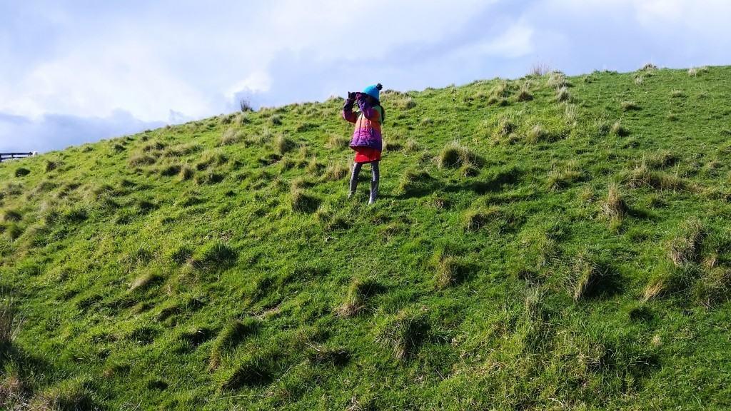 SHAKESPEAR REGIONAL PARK | AUCKLAND, NEW ZEALAND