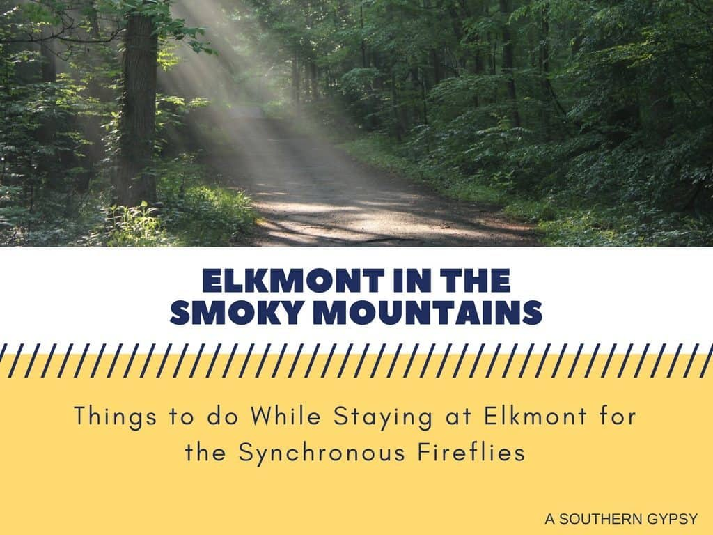THINGS TO DO WHILE STAYING AT ELKMONT FOR THE SYNCHRONOUS FIREFLIES