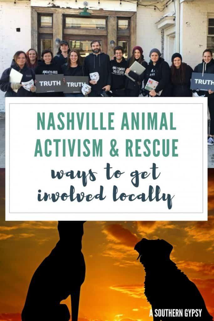 nashville animal rescue