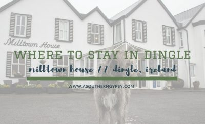 where to stay in dingle