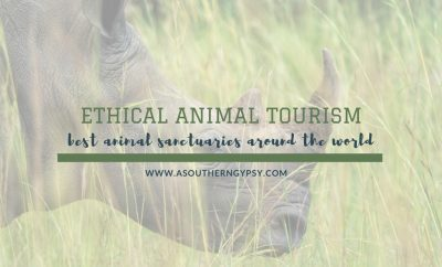 best animal sanctuaries