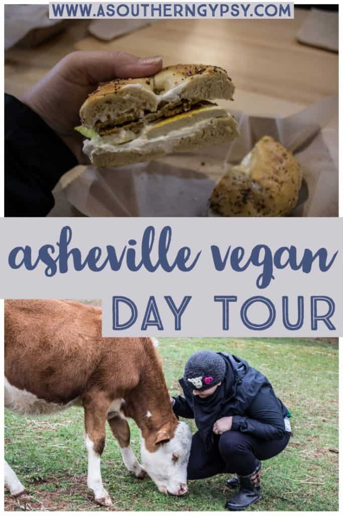 asheville vegan day tour