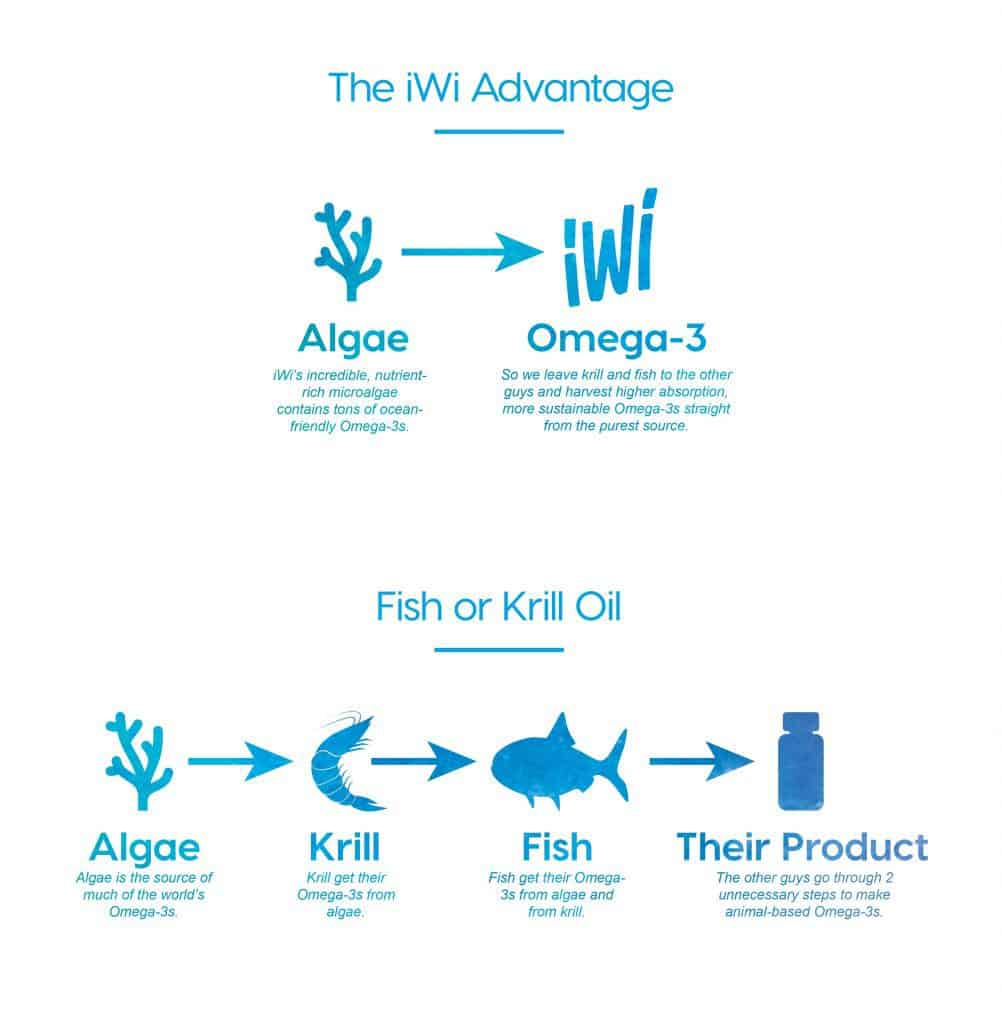 vegan omega3
