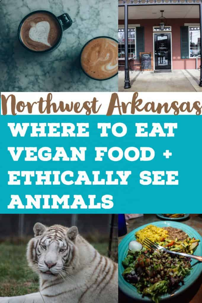 vegan options in northwest arkansas