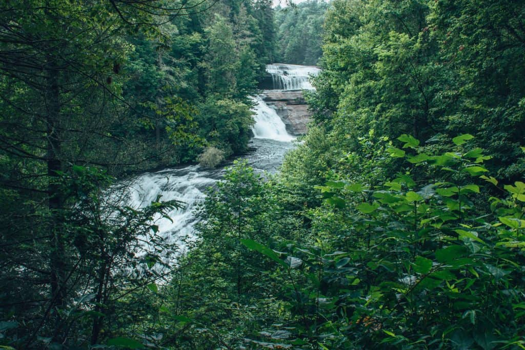 best hikes in asheville