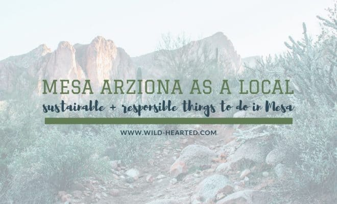 Things To Do In Mesa Arizona Experience Mesa Like A Local