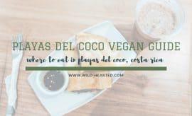 vegan in costa rica