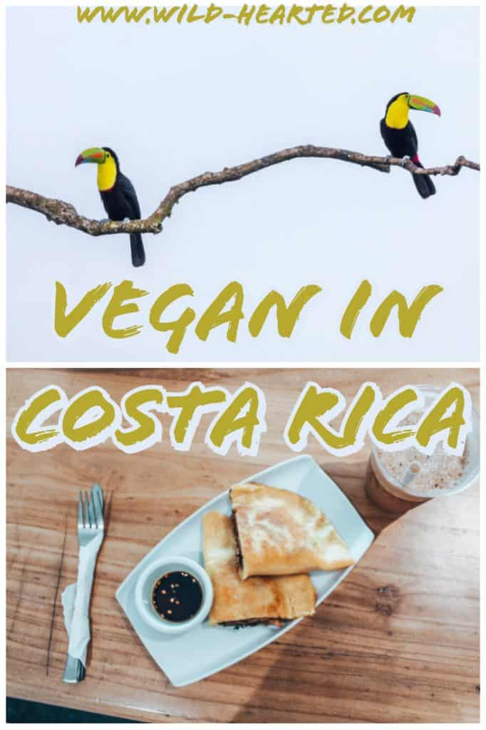 vegan in costa rica