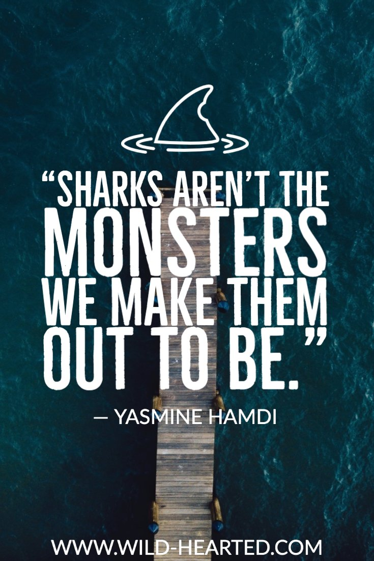 quotes about sharks
