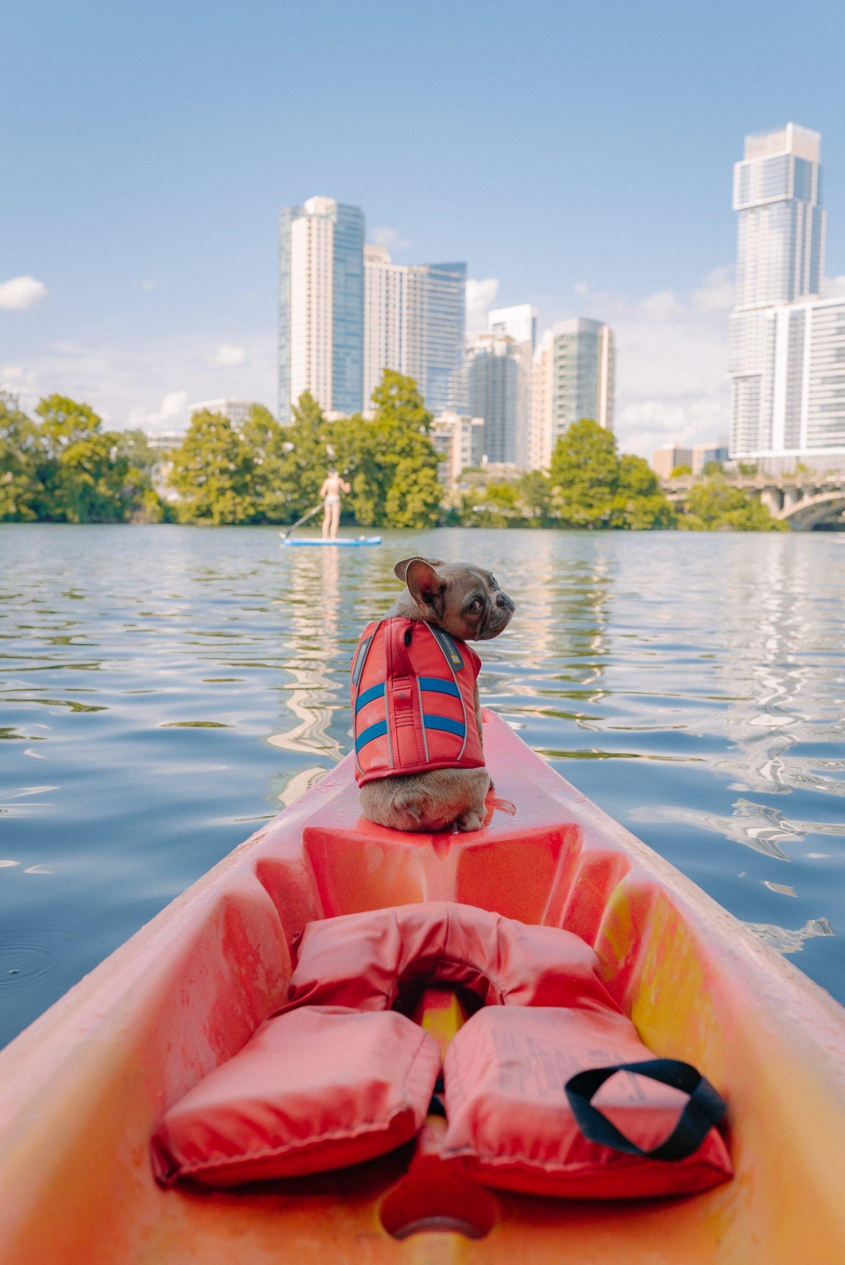 kayaking beginners