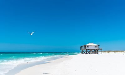 unique things to do in panama city beach florida